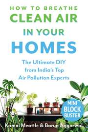 How to Breathe Clean Air in Your Homes: The Ultimate DIY from India's Top Air Pollution Experts
